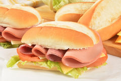 Hogie sandwiches Stock Images