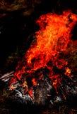 hoguera Imagen de archivo libre de regalías