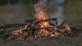 Hoguera ardiendo en la naturaleza, turistas en el campo, tarde del verano metrajes