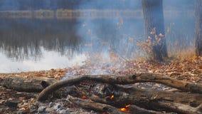Hoguera ardiendo en la orilla de un lago del bosque del otoño almacen de metraje de vídeo