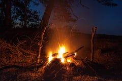 Hoguera en el bosque de la noche Fotografía de archivo libre de regalías