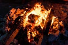 Hoguera en invierno Imagen de archivo