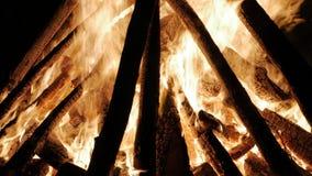 Hoguera en la noche La quema abre una sesión ascendente cercano de las llamas anaranjadas metrajes