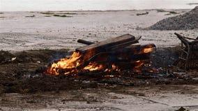 hoguera 4K en la playa Hoguera en naturaleza como fondo Madera ardiendo en la orilla blanca de la arena almacen de metraje de vídeo