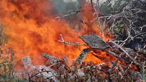 Hoguera o fuego y humo grandes del fuego almacen de video