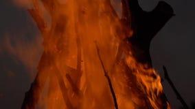 Hoguera 2 hoguera Primer de las llamas que queman en el fondo negro, c?mara lenta metrajes