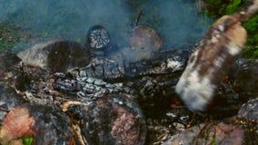 hoguera Registros que arden ascuas Dos registros están cayendo del fuego almacen de video