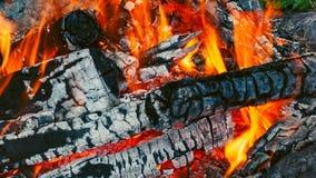 hoguera Registros que arden ascuas Dos registros están cayendo del fuego metrajes