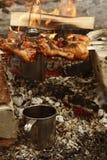 Hoguera y vino del invierno de la comida campestre fotografía de archivo libre de regalías