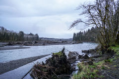 Hoh River in the rain forest of Olympic Peninsula Washington - FORKS - WASHINGTON Royalty Free Stock Image