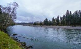 Hoh rzeka przy Hoh lasem tropikalnym w Waszyngton WASZYNGTON - rozwidlenia - Zdjęcia Stock