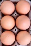 Hohe Ansicht der Eier lizenzfreie stockbilder