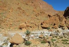 Hohe Atlaswüsten-Felsenberge und trockener Fluss Lizenzfreies Stockfoto