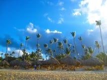 Hohe exotische Palmen auf einem der karibischen Strände, Karibikinsel, Dominikanische Republik Stockbild