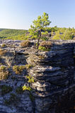 Hohe Felsformationen gesehen mit etwas grünem Wachstum in bestimmten Bereichen Stockbilder
