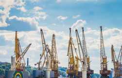Hohe Frachtkräne im Hafen Stockfotografie