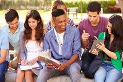 Hohe Schüler, die auf dem Campus auf Projekt zusammenarbeiten Lizenzfreies Stockfoto