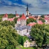 Hohe Türme von Tallin Stockfotografie