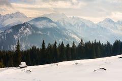 Hohe Tatra Berge Stockbild
