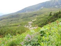 Hohe Tatra Berge, Slowakei Lizenzfreie Stockfotografie