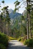 Hohe tatras Berge, Slowakei Stockbilder