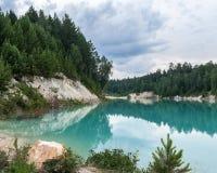 Hohe weiße Bank des blauen Teichs überwältigt mit Fichten stockfoto