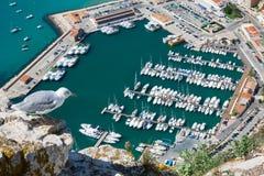 Hohe Winkelsicht des Jachthafens in Calpe, Alicante, Spanien stockbilder