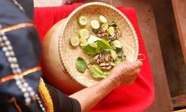 Hohe Winkelsicht von traditionellen Einzelteilen Dusun für die Reinigung Lizenzfreies Stockbild