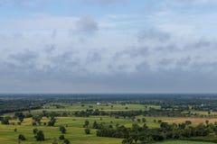 Hohe Winkelsicht von Wald- und Reisfeldern lizenzfreie stockbilder