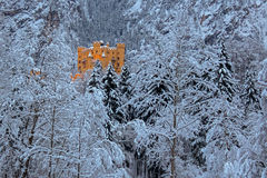 Hohenschwangau城堡在forrest的冬天 免版税库存图片