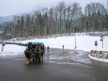 HOHENSCHWANGAU, DUITSLAND - 23 FEBRUARI 2018: Toeristen op een door paarden getrokken vervoer bij het Neuschwanstein-Kasteel in H royalty-vrije stock afbeelding