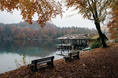 Hohenschwangau vicino a Fussen in Baviera, Germania Immagini Stock Libere da Diritti
