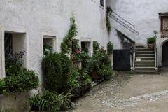 Hohenwerfen slott, Salzburgh royaltyfri foto