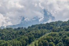 Hoher Berg mit den gr?nen Steigungen versteckt in den Wolken und im Nebel lizenzfreies stockfoto