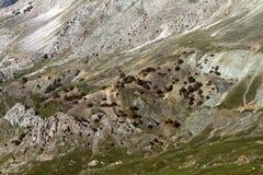 Hoher Berghang Stockfoto