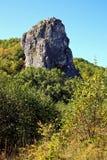 Hoher Felsen unter Holz. Felsen in einem taiga. Stockbild