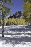 Hoher Mesa Pinnacles in Cimarron-Tal Colorado Stockbild