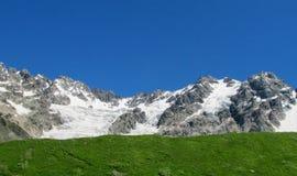 Hoher Schneegebirgszug über Hügel des grünen Grases Stockfoto