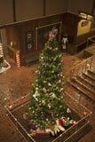 Hoher Weihnachtsbaum Stockbild