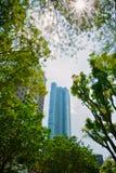 Hohes Gebäude umgeben durch Schatten des Baums lizenzfreie stockbilder