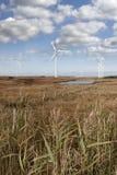 Hohes Gras und bogland mit Windkraftanlagen Lizenzfreie Stockfotografie