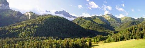 Hohes Tatra Gebirgspanorama stockfotografie