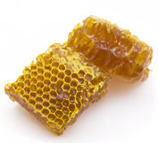 HoHoneycombs Stock Photography