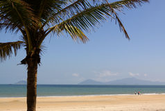 Hoi an beach  vietnam Stock Photos
