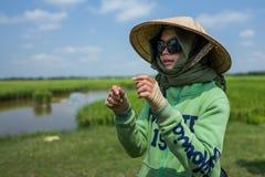 Hoi An, Vietname, o 21 de abril de 2018: O guia local explica a colheita do arroz em Hoi An foto de stock royalty free