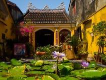 Hoian,越南- 2017年8月20日:关闭有一朵美丽的紫色花的一棵莲花acuatic植物在露台,在房子 图库摄影