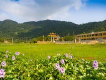 HOIAN, VIETNAM, SEPTEMBER, 04 2017: Beautiful view of an ancient temple in the horizont, with some green grass in the. Front, at hoian town in a sunny day in Royalty Free Stock Image