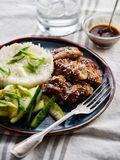 Hoisin Chicken. Traditional Asian cuisine. Chicken with sauce, r. Ice and pickled cucumbers stock photos