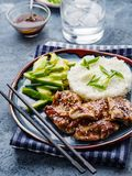 Hoisin Chicken. Traditional Asian cuisine. Chicken with sauce, r. Ice and pickled cucumbers stock photography