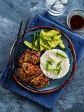 Hoisin Chicken. Traditional Asian cuisine. Chicken with sauce, r. Ice and pickled cucumbers stock image